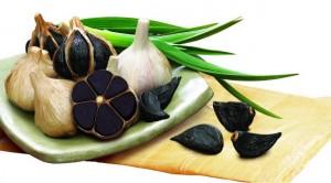 UI_SEONG_Black_Garlic_Farming