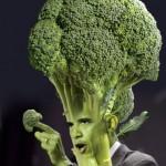 brocoli obama