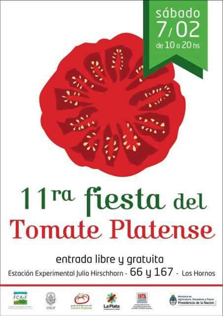 tomate platense 15